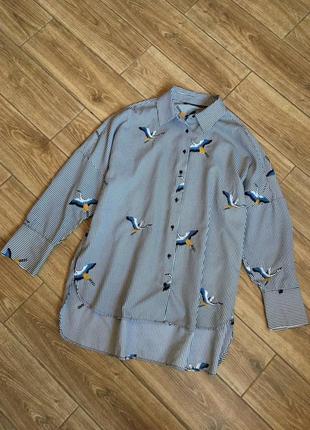 Объемная блуза оверсайз зара в полоску с вышитыми птицами