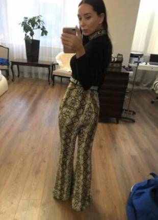 Красивые штаны питон