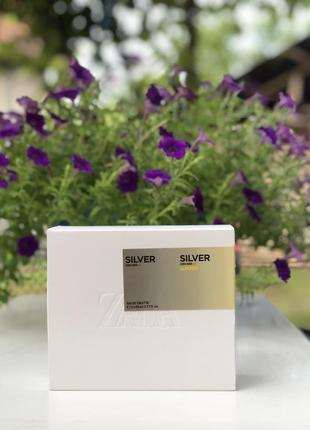 Zara man silver
