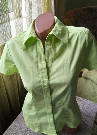 Брендовая женская салатовая рубашка в полоску. короткий рукав