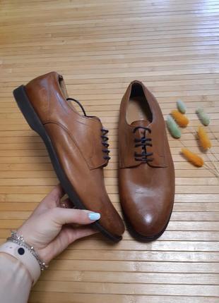 Туфлі класичні san marina