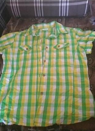 Яркая рубашка в клетку с коротким рукавом kilimanjaro