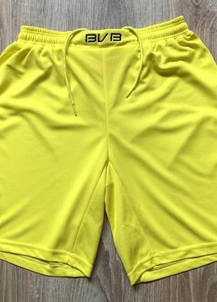 Мужские коллекционные спортивные шорты borussia dortmund
