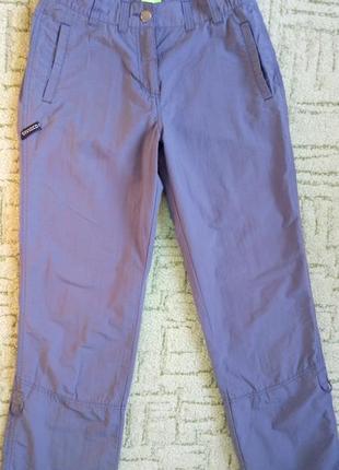 Брендовые спортивные штаны брюки