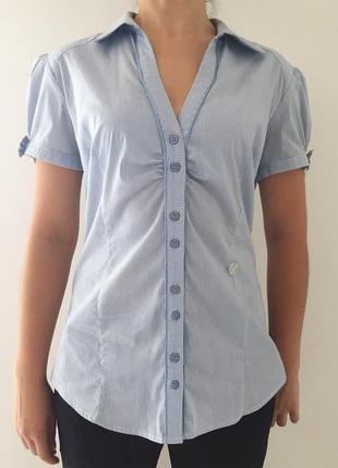 Рубашка, светлая рубашка в мелкую клетку.