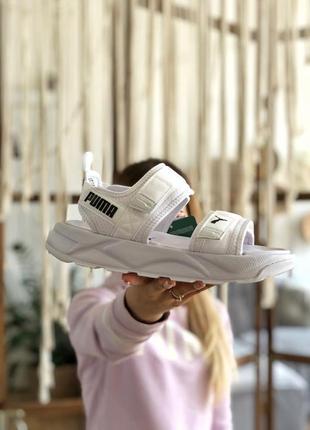 Сандалии мужские puma sandals