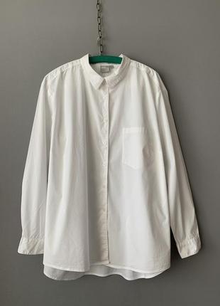 Asos хлопковая базовая рубашка.