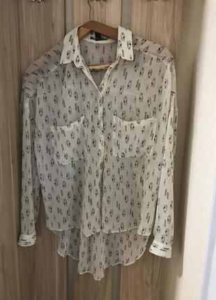Блуза прозора