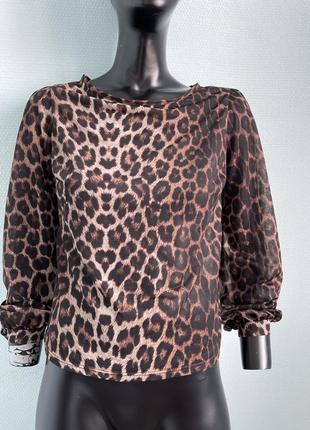 Блуза блузка голая спина в принт стильная легкая не zara
