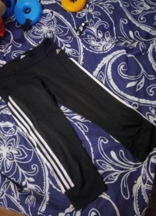 Капри шорты лосины женские спортивные