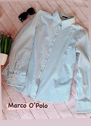 Рубашка белого цвета в серую полоску marco o'polo