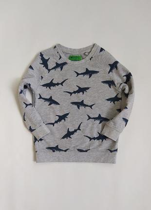 Хорошенький серый в акулки свитшот фирмы mountain на 3-4 года