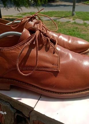 Туфли телячья кожа tiger 43