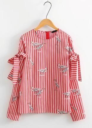 Блуза от zara в аистах 100% хлопок
