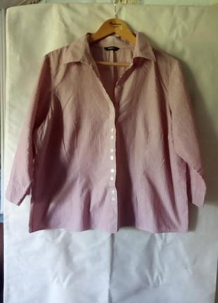 Хлопкова блуза