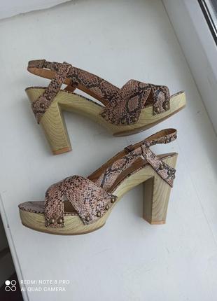 Кожаные босоножки на каблуке janr norman со змеиным принтом