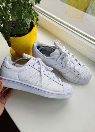 Кросівки кроссовки кеди adidas superstar оригінал