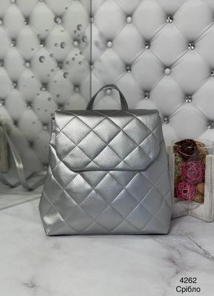 Срібний рюкзак, серебряный рюкзак