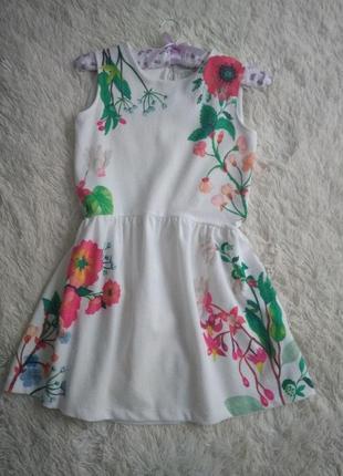 Zara платье в цветочный принт (11-12у)
