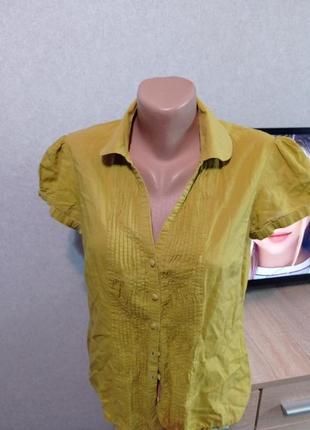 Блузка, рубашка котон