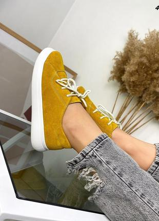 Туфли на шнурках замш