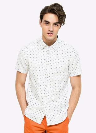 Лутняя мужская рубашка с коротким рукавом в горошек