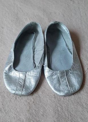 Шкіряні сріблясті чешки