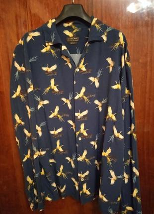 Чоловіча сорочка бренду zara