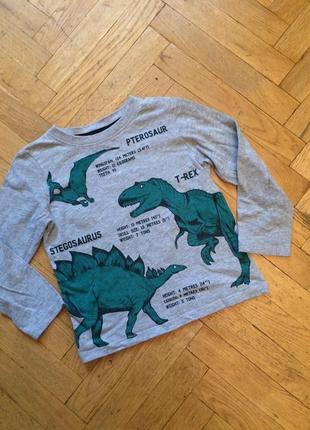 Лонгслив, реглан, футболка длинный рукав, с динозаврами, хлопок,h&am