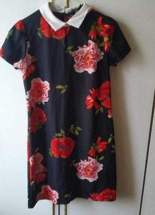 Платье, а силуэт платье, платье с воротником, платье трапеция цветочный принт, платте в цветах