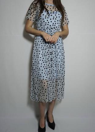 Блакитна сукня в чорний горошок, нова wednesday girl