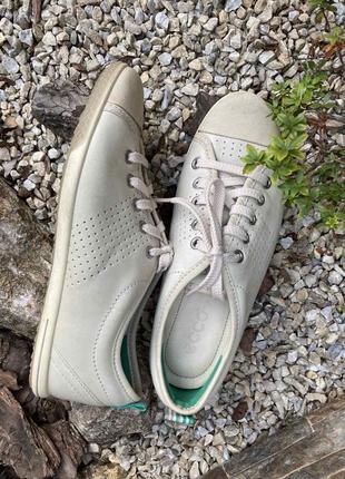 Фирменные кожаные женские кроссовки кеды ecco 38р.