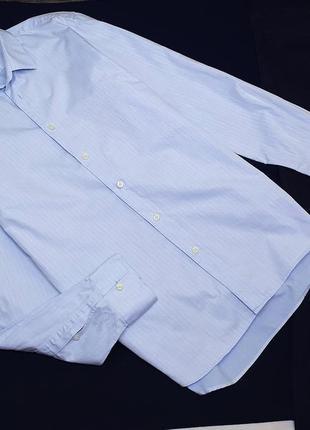 Хлопковая рубашка calvin klein голубая в полоску