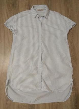 Плаття рубашка zara