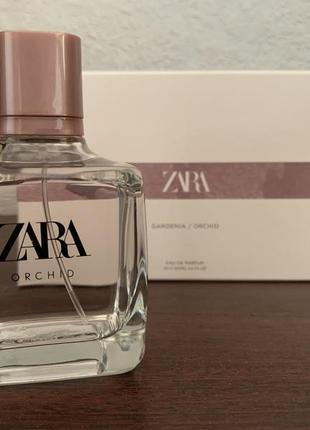 Zara orchid