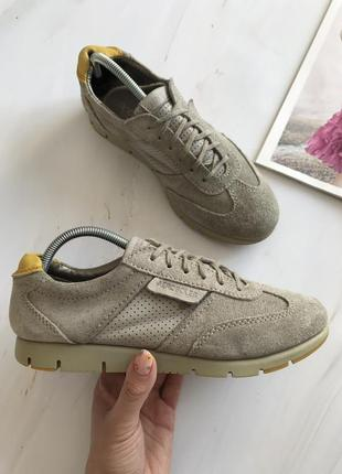 Замшеві кросівки aerosoles