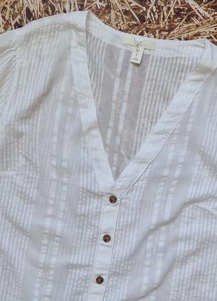 Новая хлопковая блуза h&m. размер 383 фото
