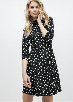 Платье большой размер dorothy perkins