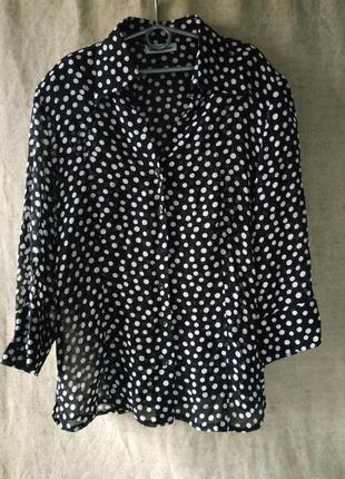 Блузка в горошек gerry weber. блуза вискоза.