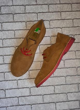 Шикарные туфли baleeblu ( испания)