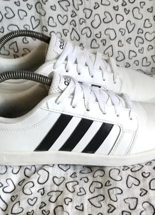 Кроссовки adidas neo sneaker, 38 р., 24-24,3 см