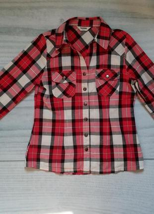 Рубашка в клеточку на 140-146см , фирма tammy