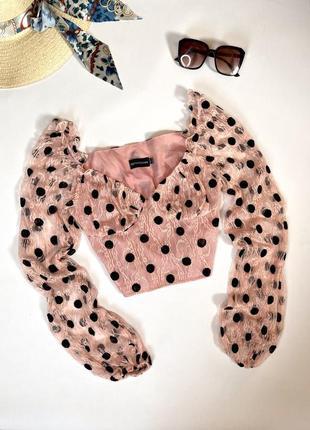 Шикарный топ в горошек , блуза, кофта