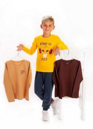 Набор джемперов, футболок с длинными рукавами
