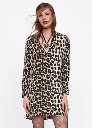 Леопардовое платье рубашка zara