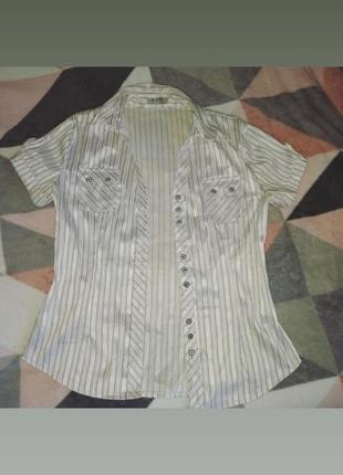 Продаю блузку в полоску