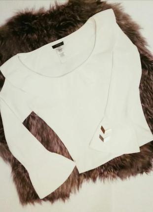 Джемпер / кофта / блузка с воланами на рукавах