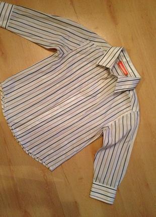 Рубашка на мальчика  в вертикальную полоску  (длинный рукав) duck&dodge