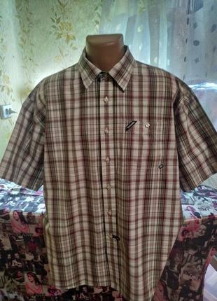 Рубашка шведка батальная