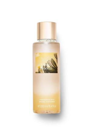 Свежий, легкий, очень приятный аромат fresh oasis victoria secret